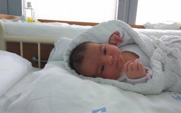 FN Brno: Největší a nejbezpečnější porodnice. Maminka s pětidenním synem píše porodnici