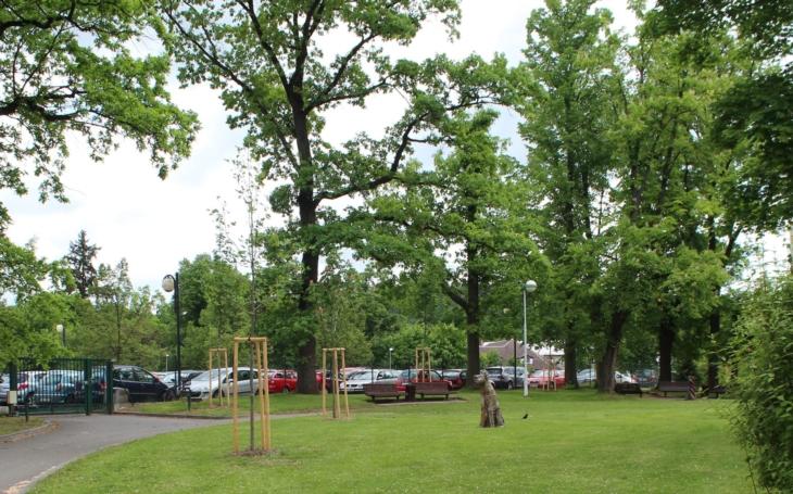 Písecká nemocnice dokončila obnovu zeleně