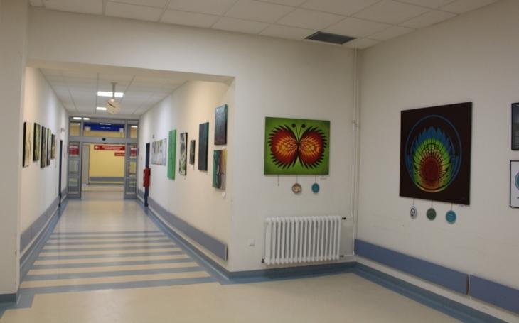 Mladí umělci věnují část svého výdělku z prodeje obrazů na zvelebení Svitavské nemocnice